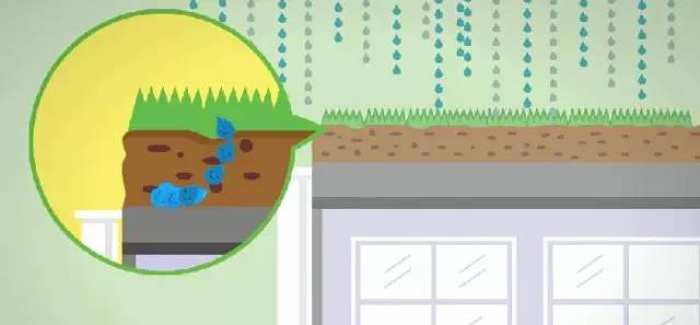 a 路面低洼_建设四级雨水收集利用系统