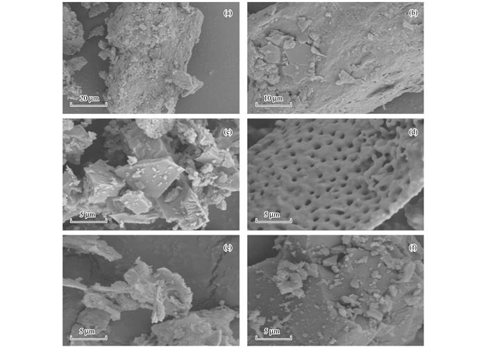 多种材料对水中氨氮吸附特性 (图6)